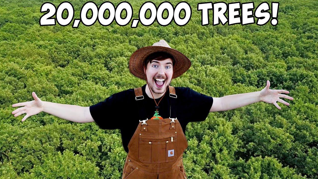 #TeamTrees: як посадити 20 мільйонів дерев для боротьби із зміною клімату